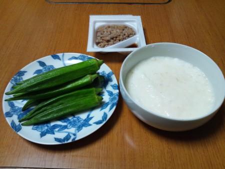 20120907_3種のネバトロ丼