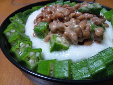 20120907_ネバトロ丼