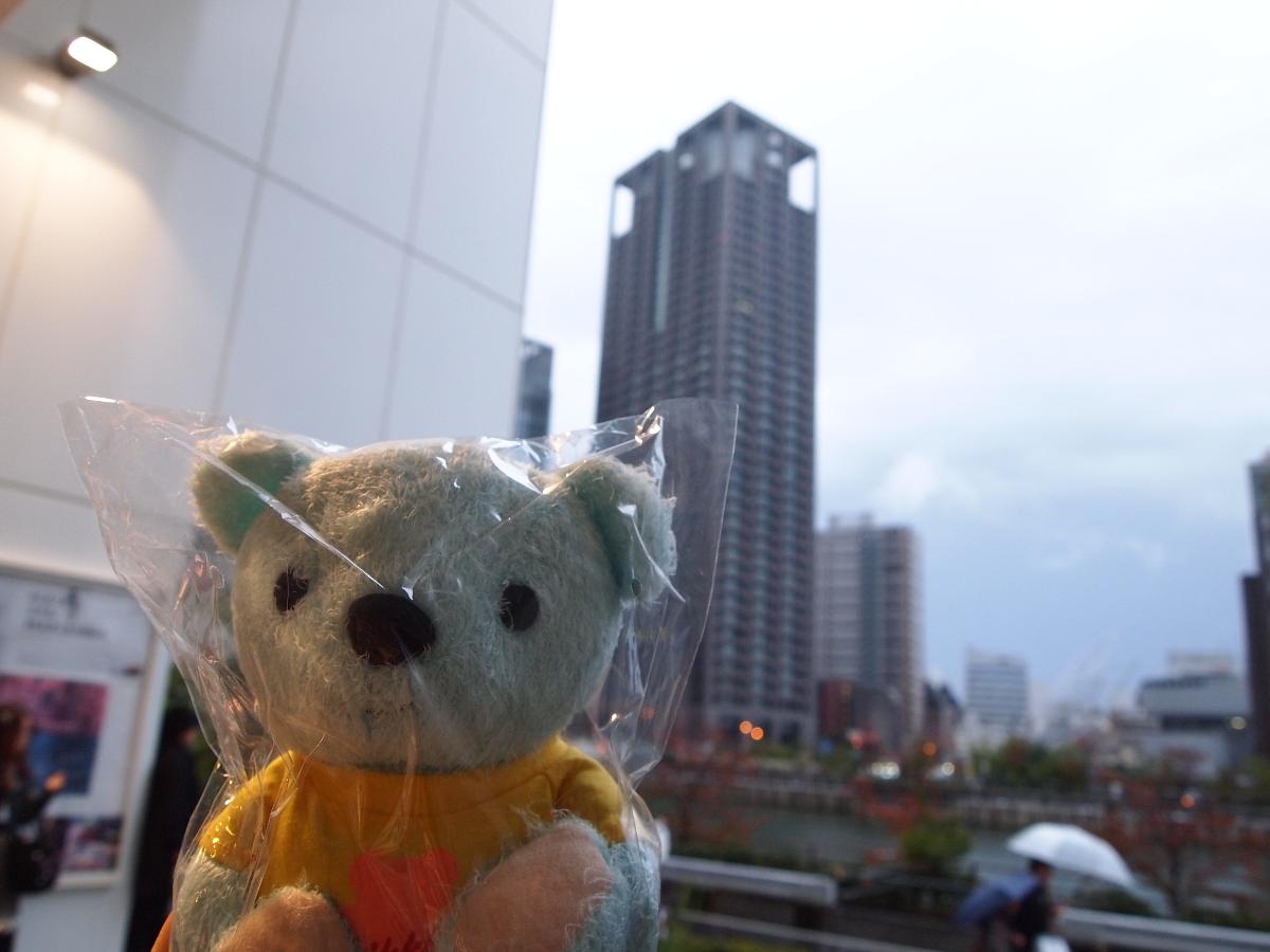 ゆりっクマが雨で残念がっています!
