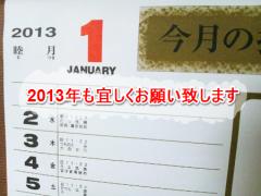 2013年も宜しくお願い致します