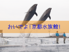 おいでよ!京都水族館!